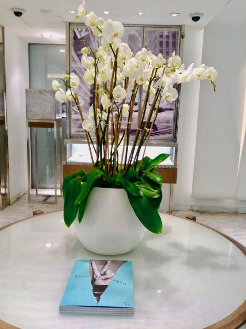 IMG 7358 480x640 - Tiffany & Co.