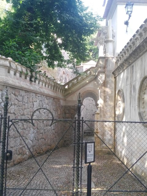 IMG 20180803 094231 480x640 - Treasures of Portugal I: Quinta da Regaleira.
