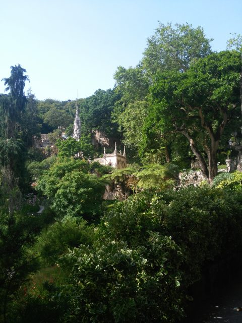 IMG 20180803 102847 480x640 - Treasures of Portugal I: Quinta da Regaleira.
