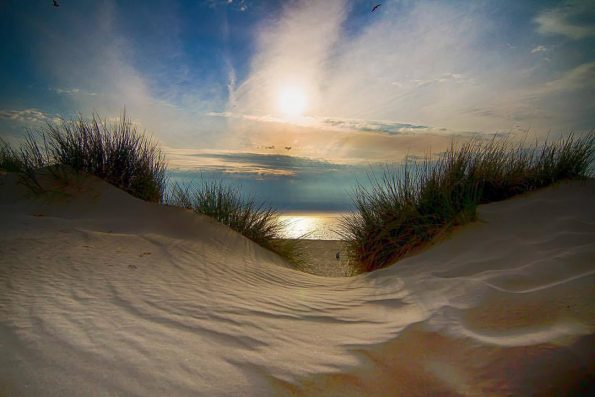 Netherlands 2015 595x397 - Scott Hefti, the photographer of the deepness of life