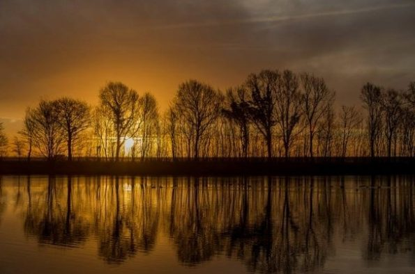 Netherlands 2018 595x394 - Scott Hefti, the photographer of the deepness of life