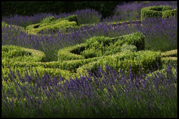 04 595x397 - Richard Miers British Garden Designer