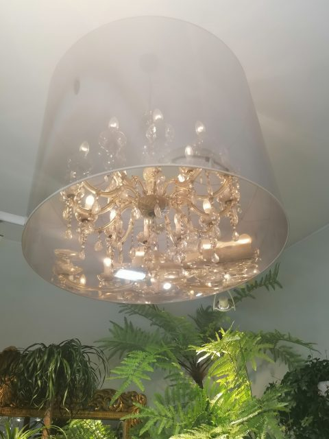 IMG 20200723 115742 480x640 - Maison Narmino & Sorasio, the exquisite Floral Art