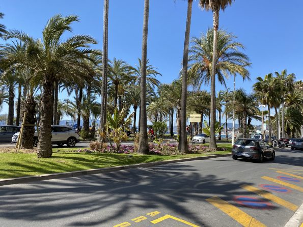 IMG 0735 595x446 - Cannes, the chic and elegant city of the French Riviera