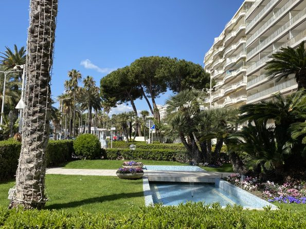 IMG 0745 595x446 - Cannes, the chic and elegant city of the French Riviera