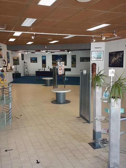 Captura de pantalla 2021 05 07 a las 17.45.51 480x640 - International Art EXPO organized by Chercheur d'Artistes Galerie