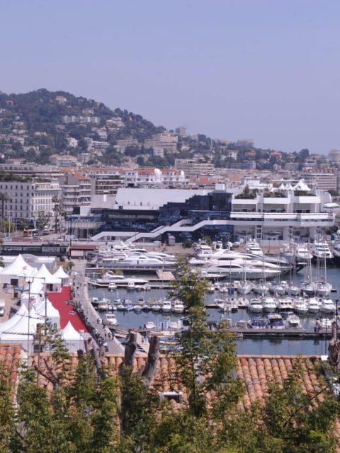 17 zone festival 1 480x640 - 74th edition of the Cannes International Film Festival