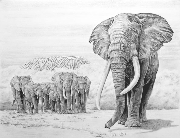 Elephants65x50Encre2020 595x457 - The artists awarded in the first International Art Expo