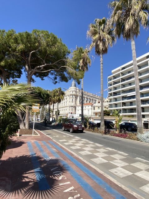 IMG 0782 480x640 - Cannes, a luxurious city that also offers charming corners