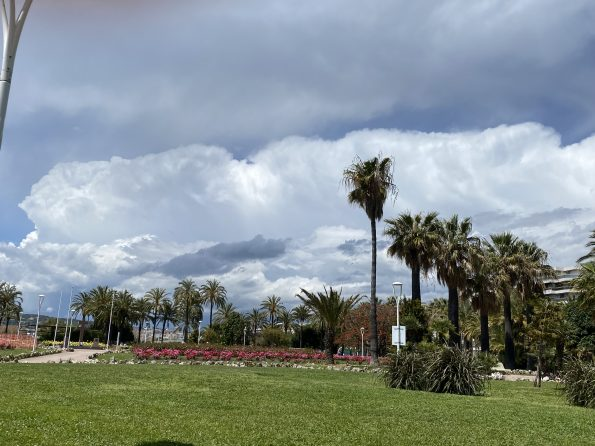 IMG 1143 595x446 - Cannes, a luxurious city that also offers charming corners