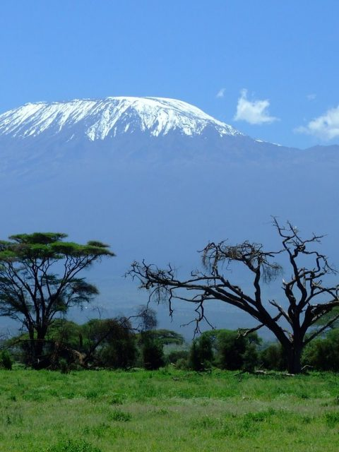 kilimanjaro 1025146 1280 480x640 - Luxe by Mulanda, the luxury travels to best lodges of Africa part I