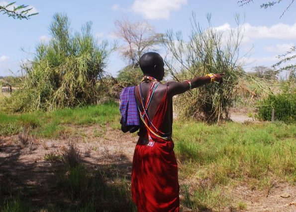 maasai 4521850  480 595x427 - Luxe by Mulanda, the luxury travels to best lodges of Africa part I