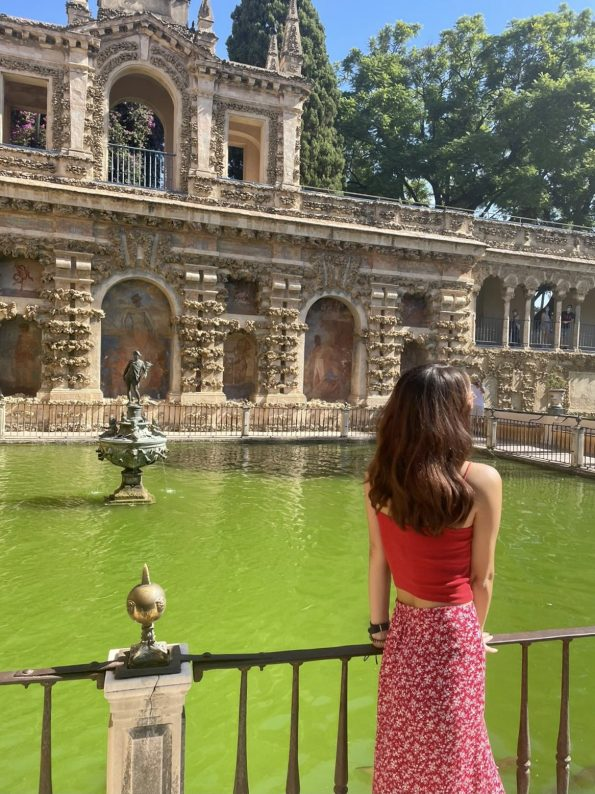 8E623E57 B72A 4F89 AAFD 33EC6E032DC7 1 201 a 595x794 - Seville, one of the most amazing cities in Spain