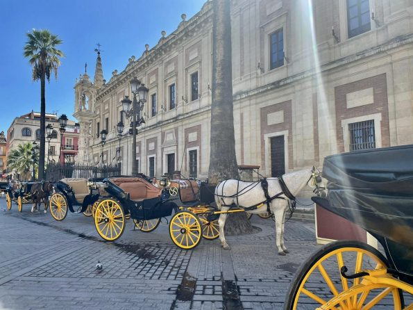 F3453D0C B80B 4E5B A772 AE3F72CFB7BB 1 201 a 595x446 - Seville, one of the most amazing cities in Spain